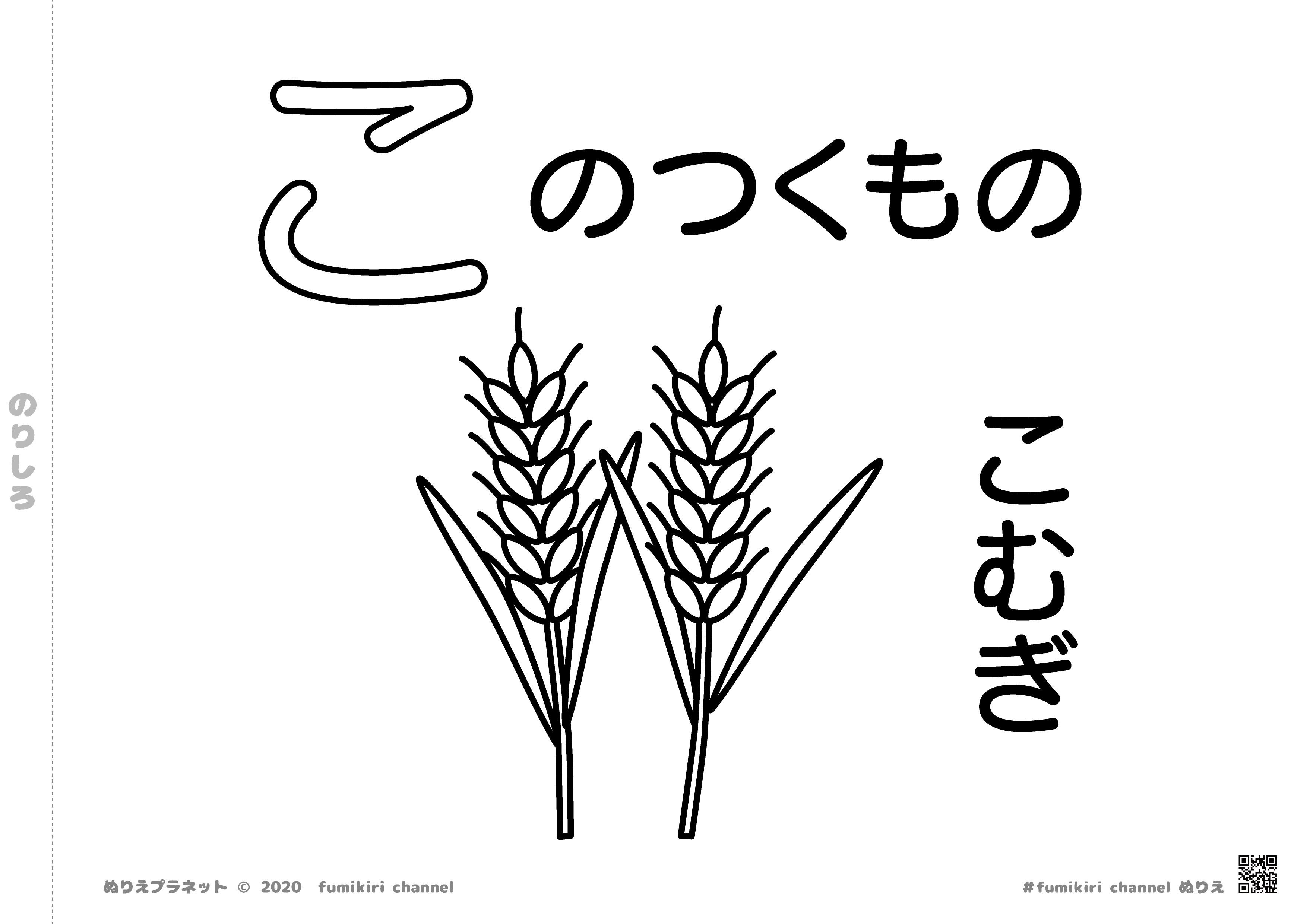 小麦がりっぱに実っている塗り絵