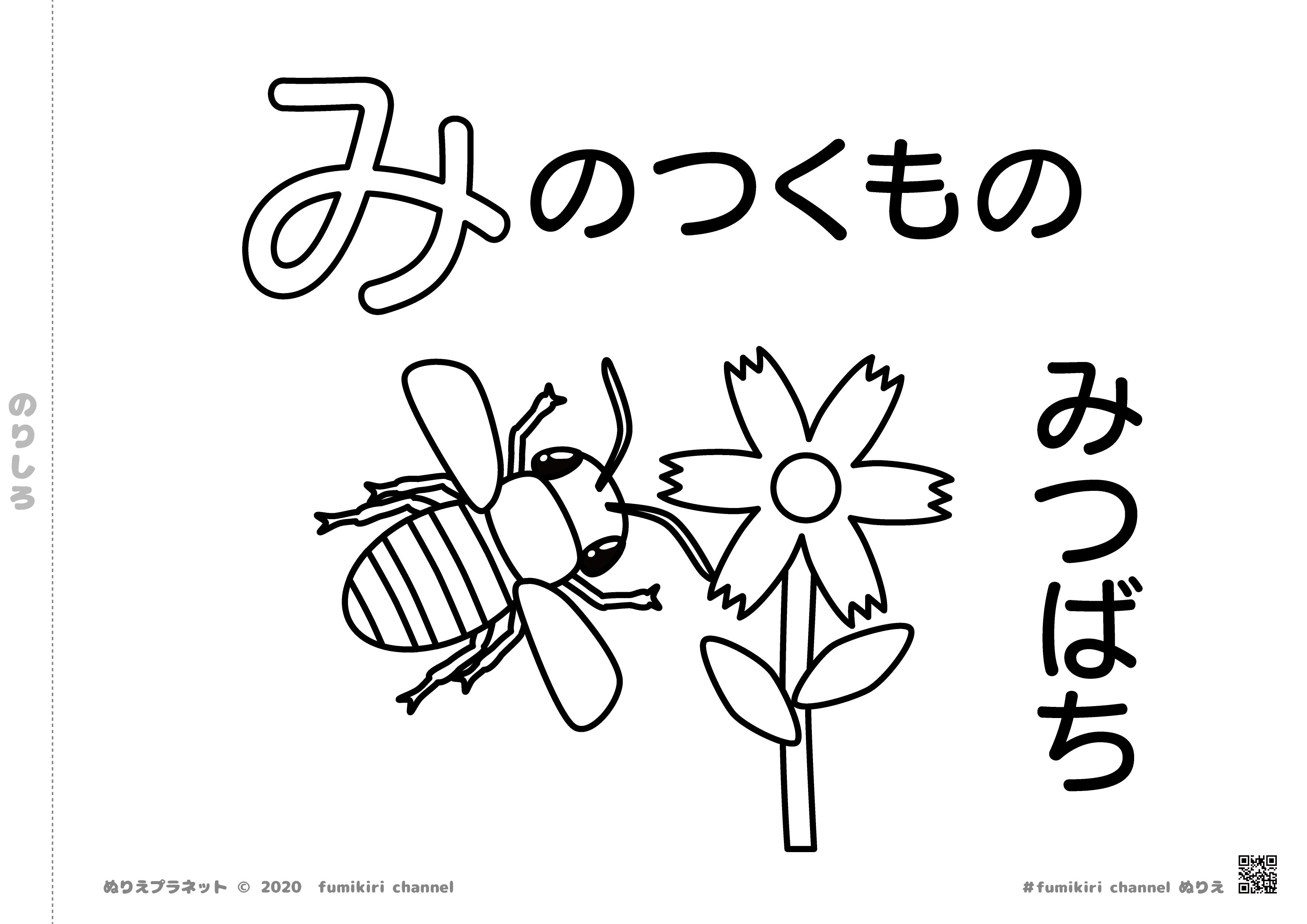 春になると活動をはじめるミツバチとお花の塗り絵です。